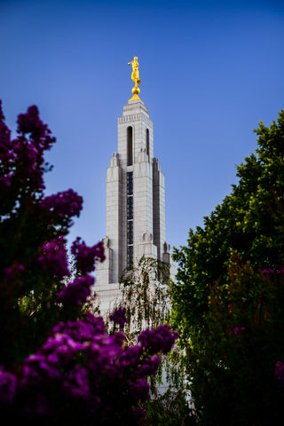 Redlands Temple - Spire by Scott Jarvie