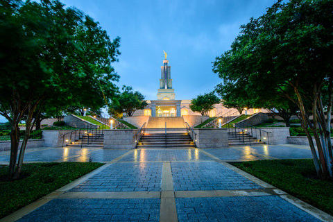San Antonio Temple - Leading to the Temple by Scott Jarvie