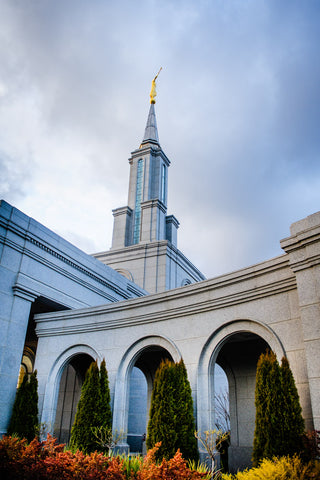 Sacramento Temple - Looking Up by Scott Jarvie