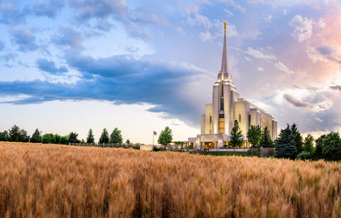 Rexburg Temple - Field Sunset by Scott Jarvie