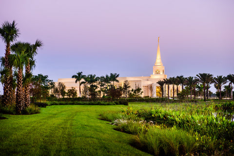 Fort Lauderdale Temple - Palm Trees by Scott Jarvie