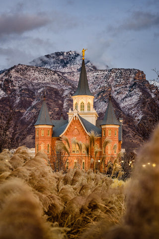 Provo City Center Temple - Fall Reeds by Scott Jarvie