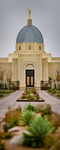 Tucson Temple - Vertical Panorama by Scott Jarvie