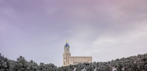 Cedar City Temple - Above the Trees Panorama by Scott Jarvie