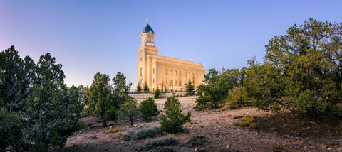 Cedar City Temple - In the Cedars by Scott Jarvie
