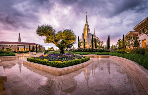 Rome Italy Temple - Rain Reflections by Scott Jarvie