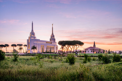 Rome Italy Temple - Field by Scott Jarvie