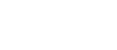 Benchmark Media Systems, Inc.