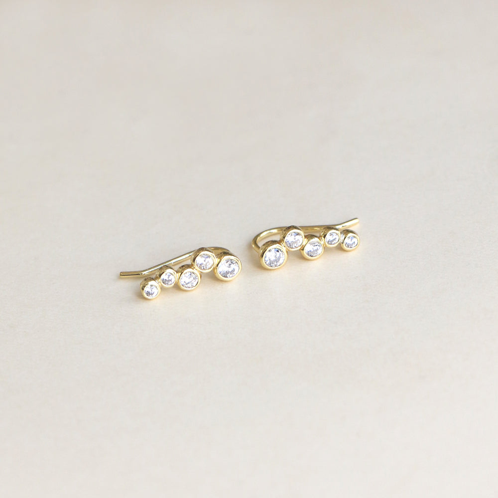 Stone Climbers Earrings