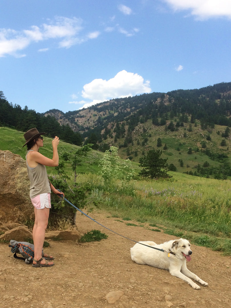 I Get Around: Colorado |
