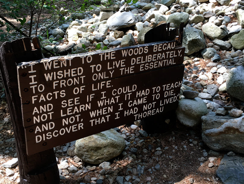 Sign at Original Site of Thoreau's Cabin | Smudge Ink