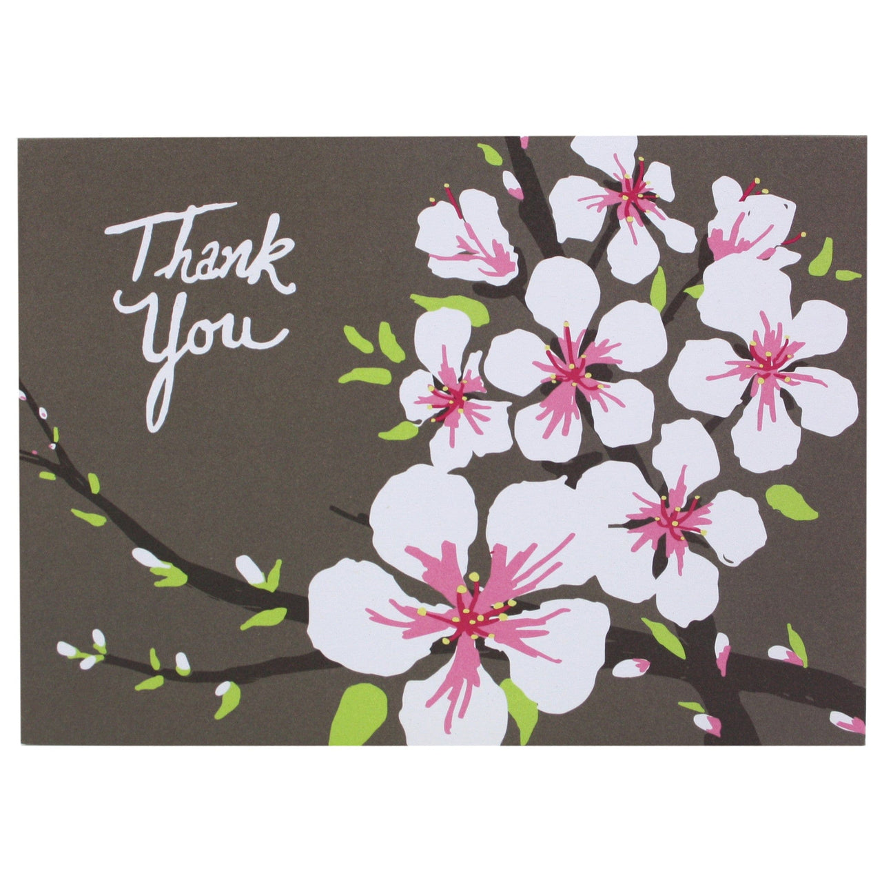 Almond Blossoms Boxed Note Cards