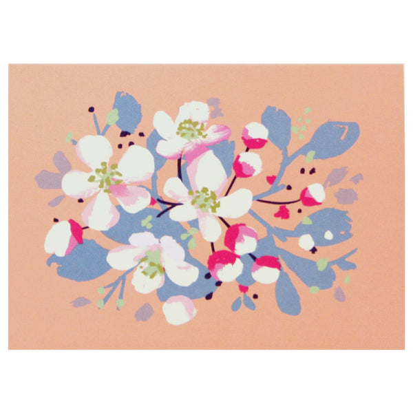 Apple Blossoms Boxed Note Cards
