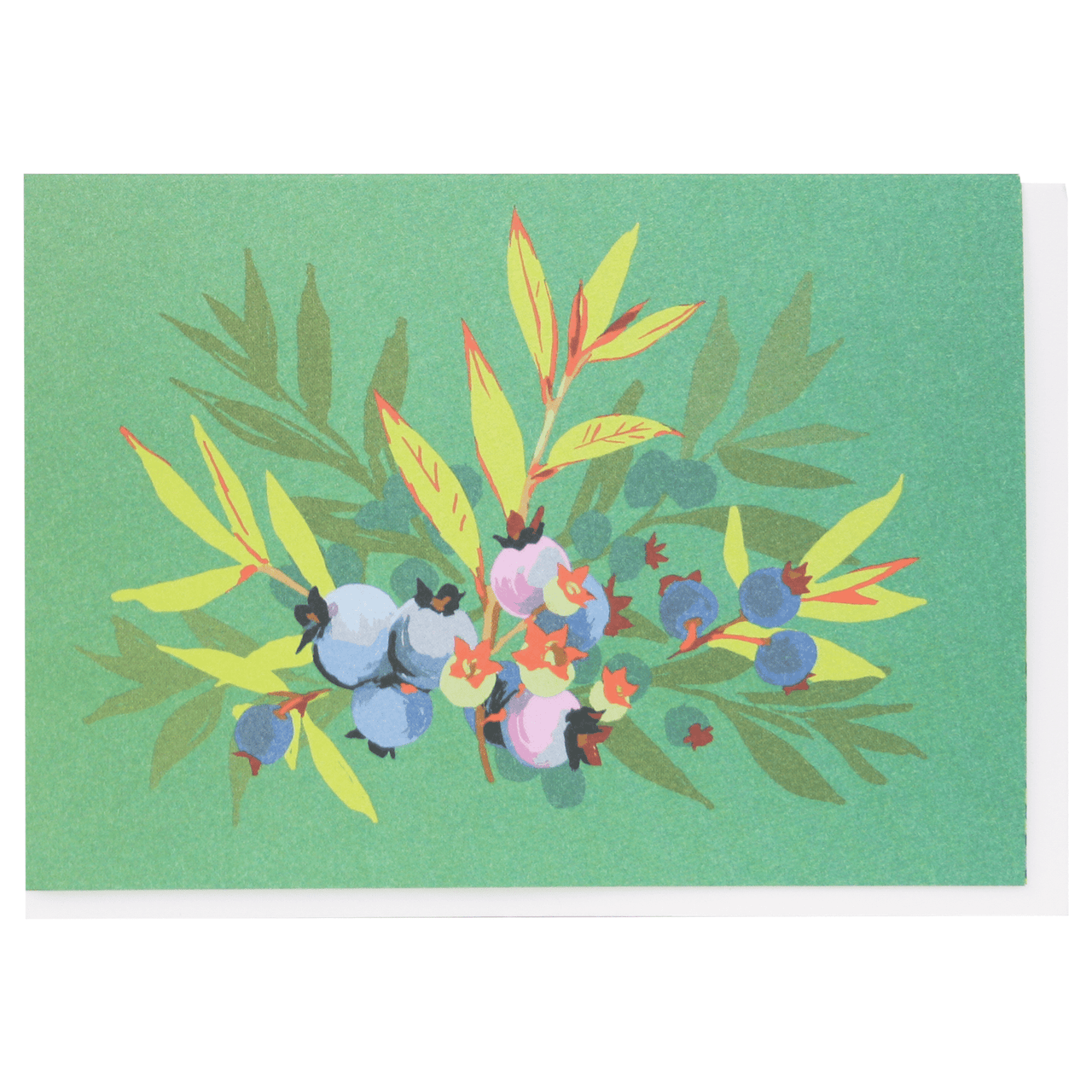 Blueberries Boxed Note Cards
