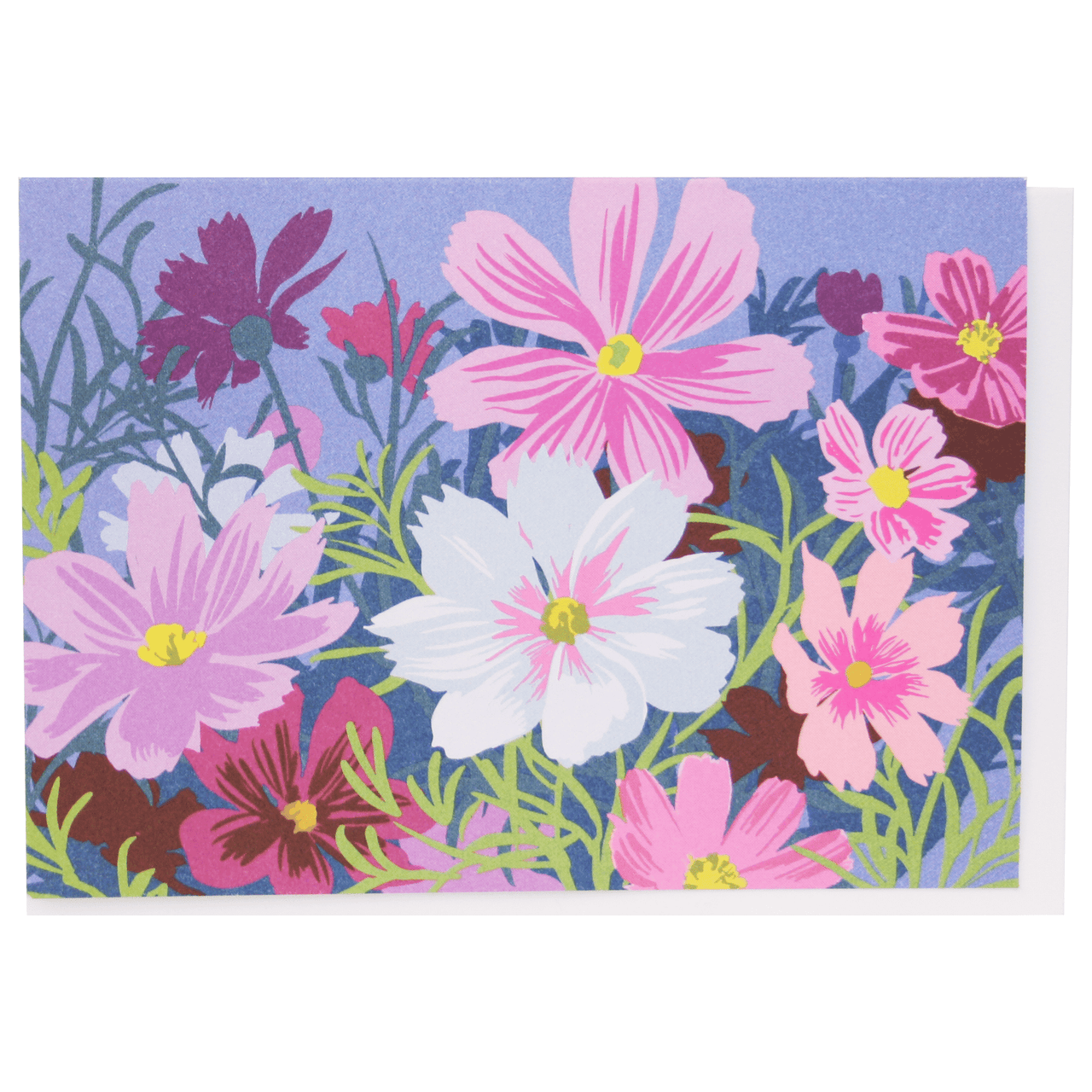 Cosmos Boxed Note Cards