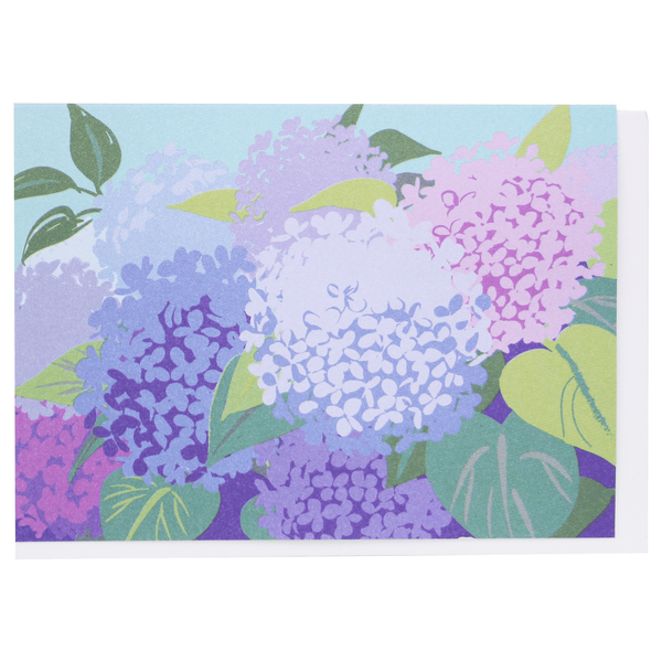 Hydrangeas Boxed Note Cards