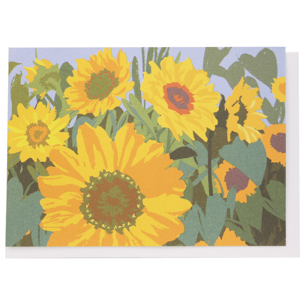 Sunflowers Boxed Note Cards