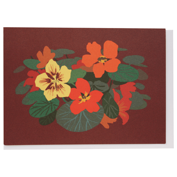 Nasturtiums Boxed Note Cards