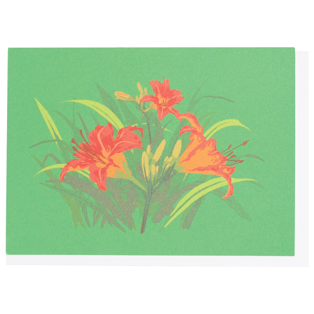 Daylilies Boxed Note Cards