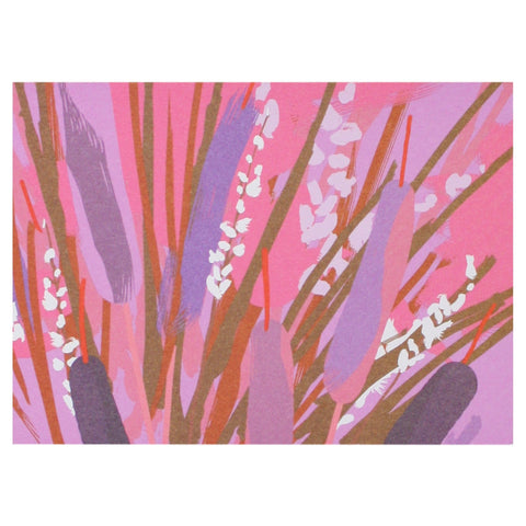 Cattails Boxed Note Cards