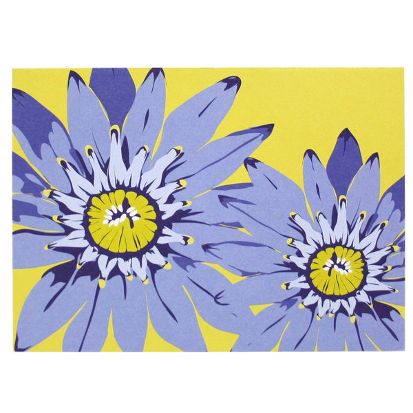 Cornflower Blue Daisy Note Card