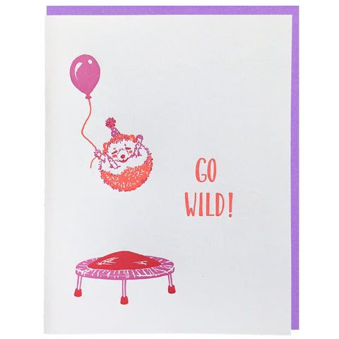 Hedgehog on Trampoline Birthday Card