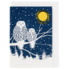 Peaceful Owls Holiday Enclosure Card Set