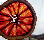 Dehydrated Blood Orange Slices - Fruits By Pesha