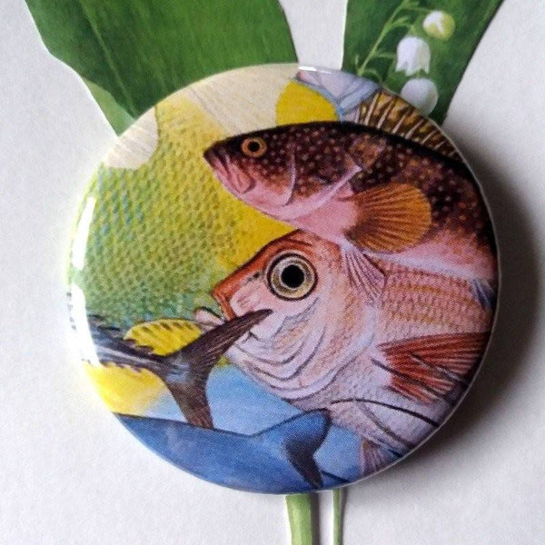 Badge rond poissons aux gros yeux accumules