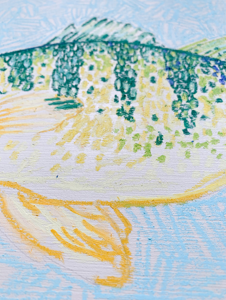 Yellow Perch on Teal (Facing Left) - 11 x 14