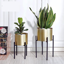 Cargar imagen en el visor de la galería, Floor Standing Flower Vase with Metal Standing Shelf  With Draining Hole