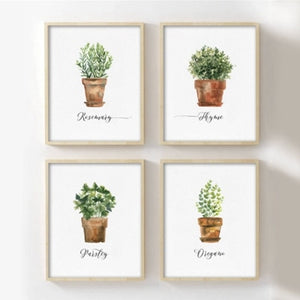 Watercolor Herb Collection on Canvas