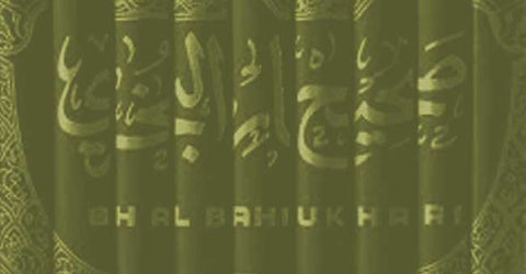 Books on Islamic Law / Fiqh