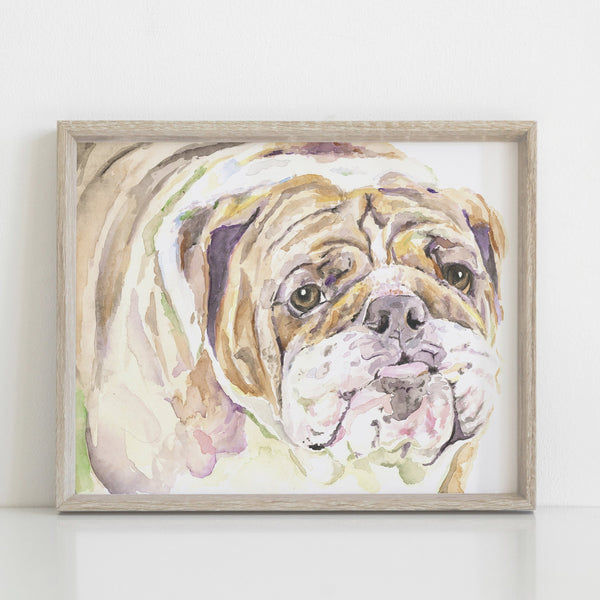 English Bulldog Giclée Watercolor Print