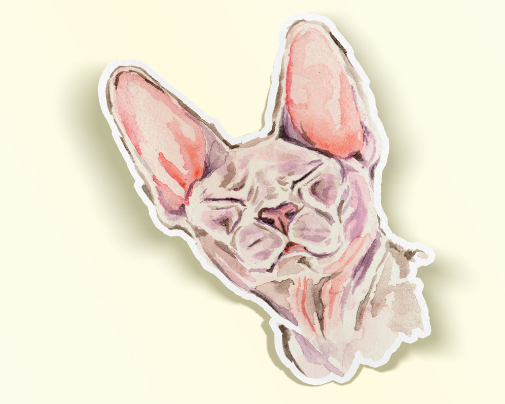 Sphynx Cat Sticker, Sphynx Cat Die Cut Vinyl Sticker, Hairless Cat Sticker, Watercolor Sphinx Cat Sticker, Cat Vinyl Stickers,  Sphinx Gift