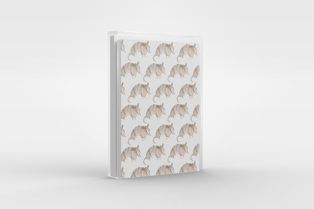Armadillo Pattern Texas Greeting Card Set, Illustrated Texas Note Card Set, Austin Texas Gift, Stationery Set of 6 Cards