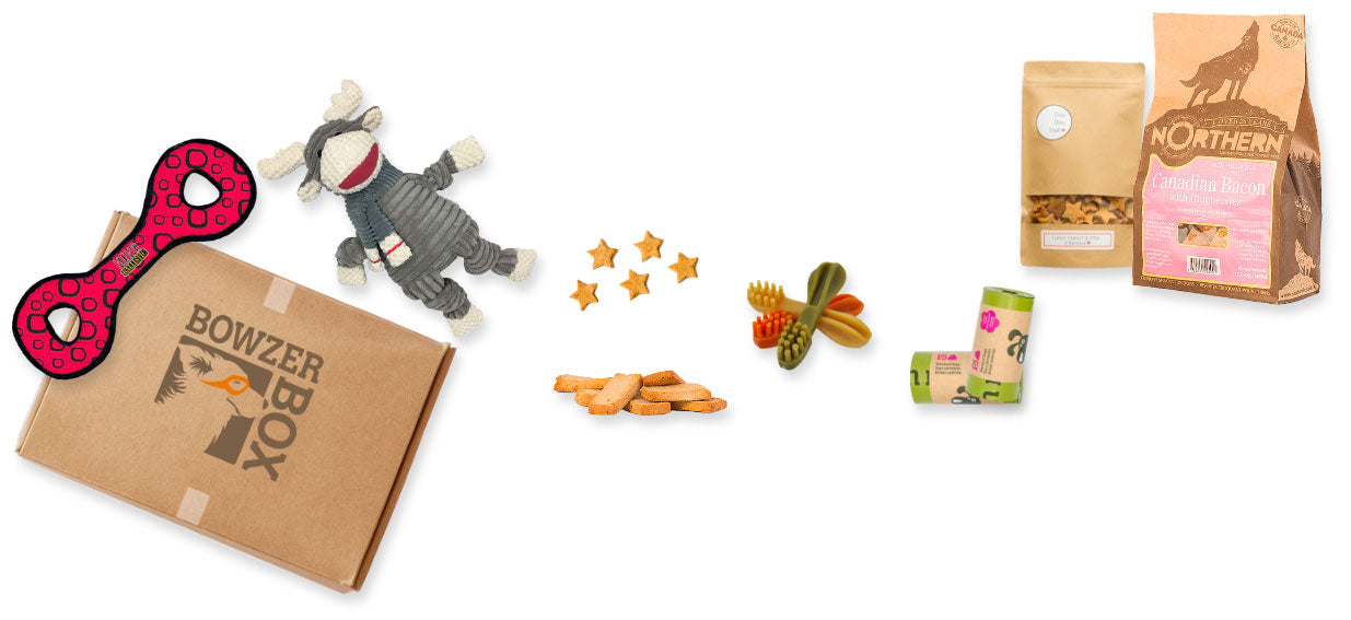 A typical display of toys, treats and accessories included in a Bowzer Box