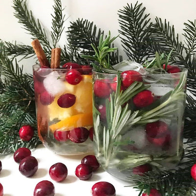Water for Wellness - Holiday Infused Water