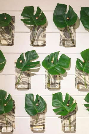 plant wall pocket