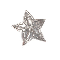 Pin Badge - Star - FRONT