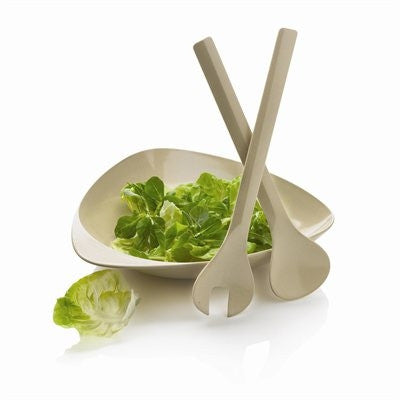 Bamboo Salad Set