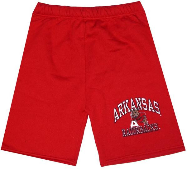 Razorbacks Vintage 90's Shorts Arkansas Big Nasty Nolan Rare FInal 4