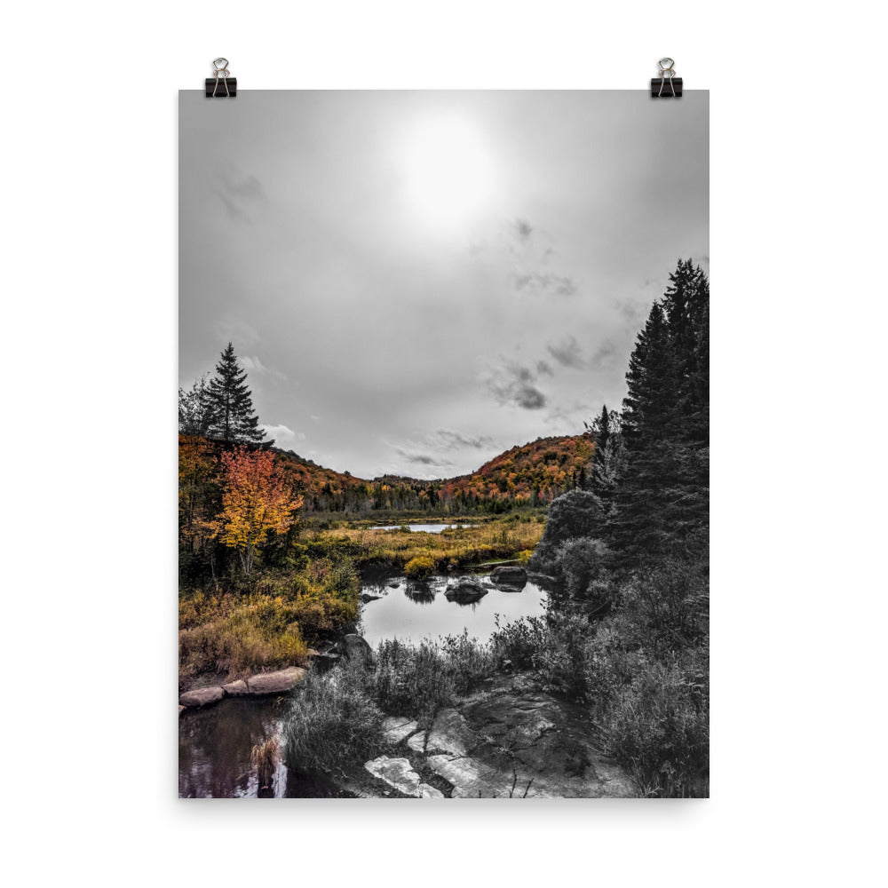 Autumn in the Country Color/B&W photograph Poster