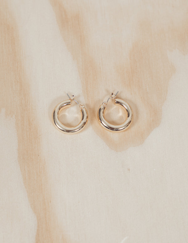 Mini Circle Pincatch Hoop Earrings