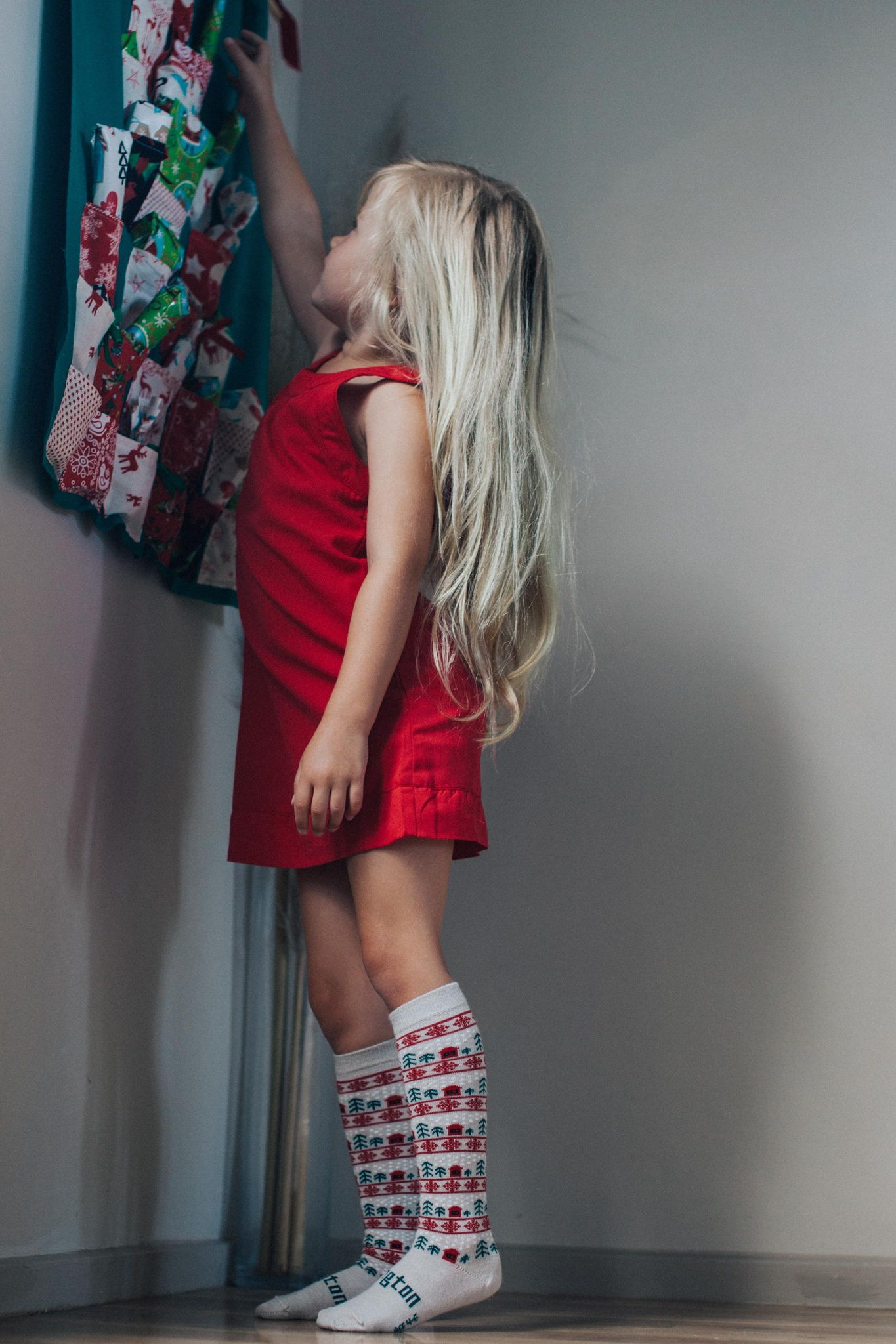 lamington merino wool knee high socks - jingle - freddie the rat kids boutique