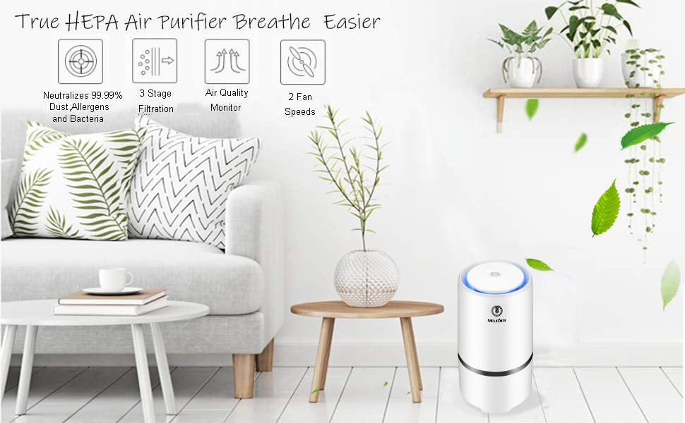 Desktop Air Purifier Active Carbon Filter Dust Active Ozone Generator Sterilizer Control Smoke Clean Household Appliances with True HEPA