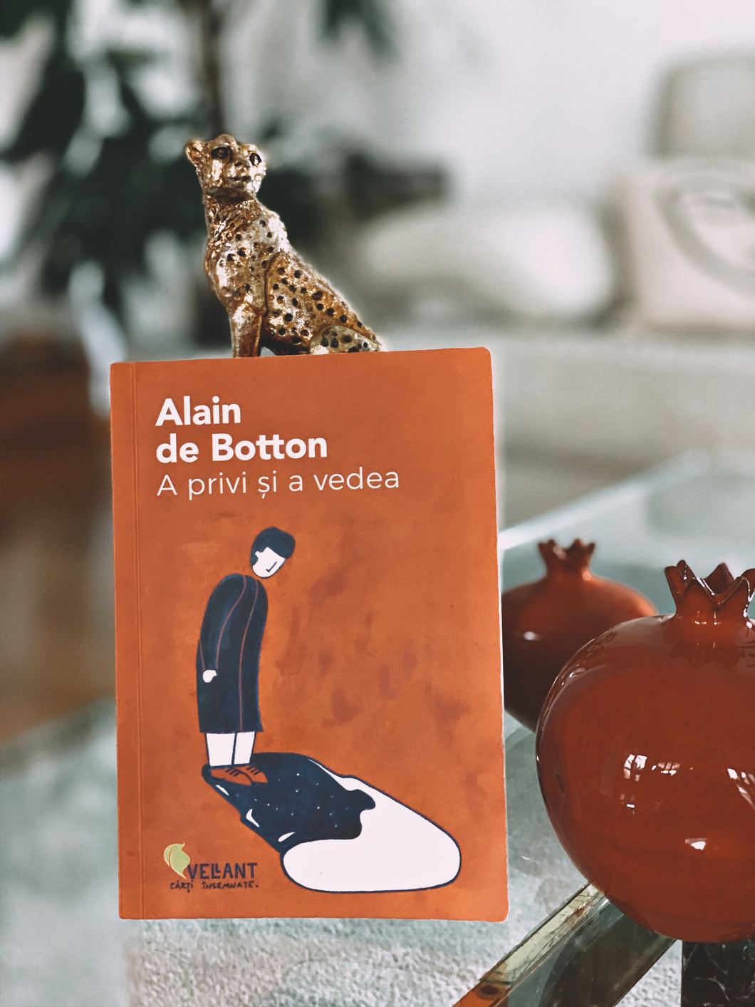 A privi și a vedea, Alain de Botton