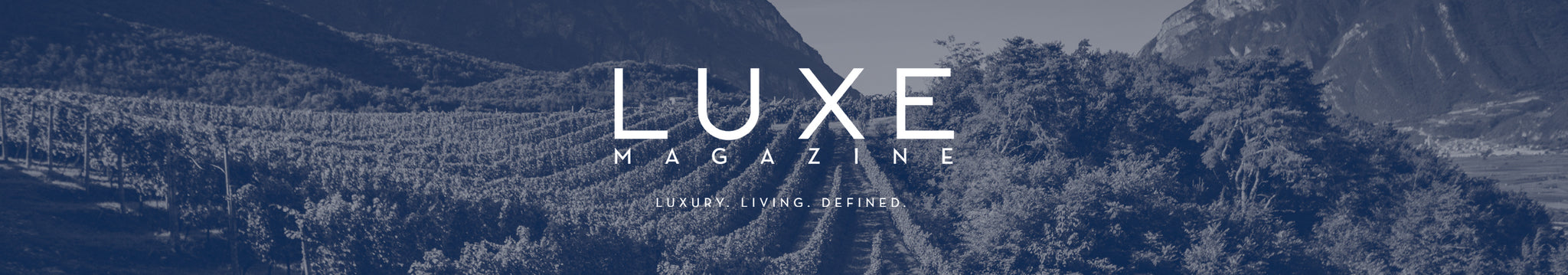 LUXE magazine top picks<br>by Michael Pinkus