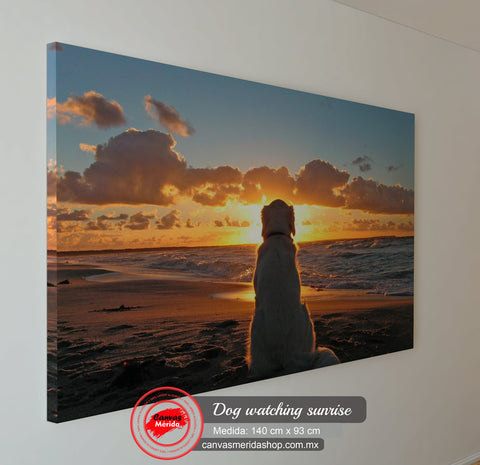 Dog Watching Sunrise - Canvas Mérida Fine Print Art