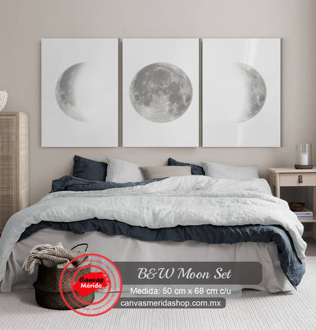 Black & White Moon Phases
